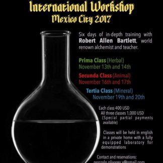 Alchemy International Workshop